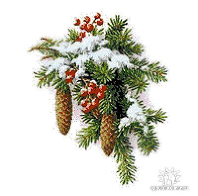 зима елка снег букет
