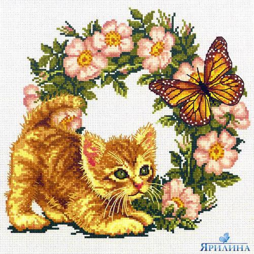 Охота, бабочка, котенок, венок