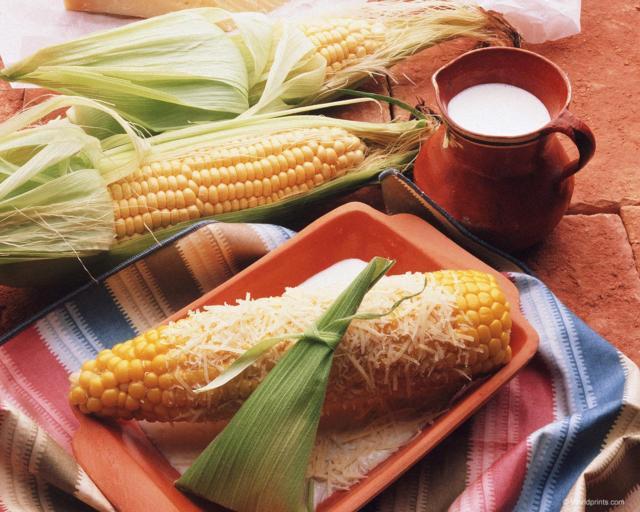 Кукурузный натюрморт, кукуруза