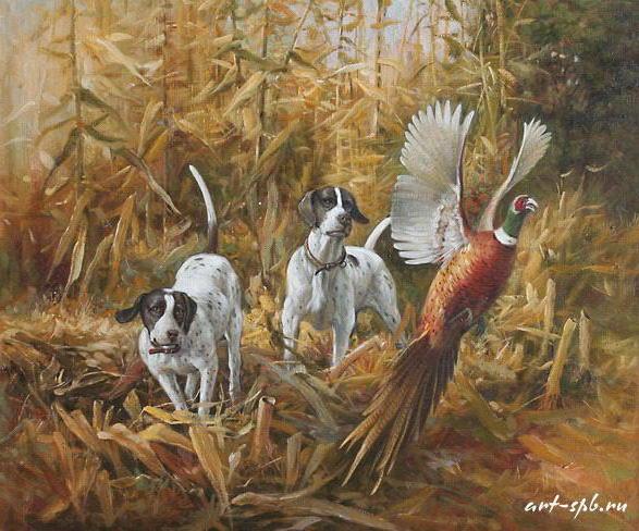 Охота на фазана, животные,