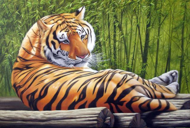 Тигр, тигр, животные, природа,