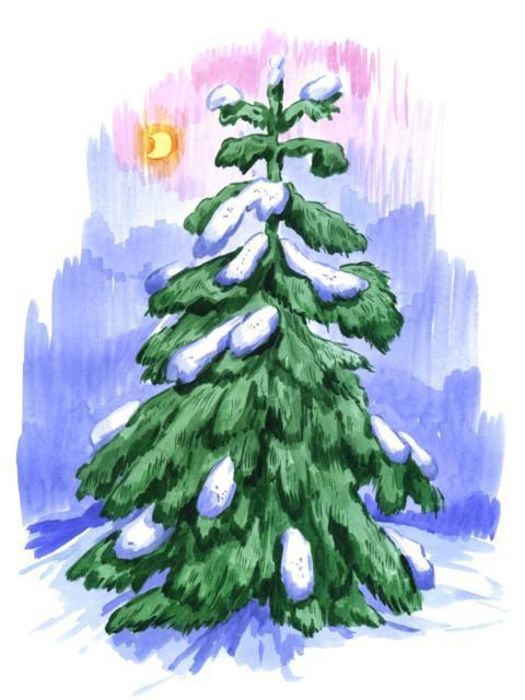 Елка, елка, зима, новый год,