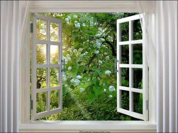 Оригинал - Схема вышивки «Окно