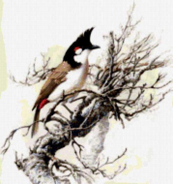 Рисунки птиц, предпросмотр