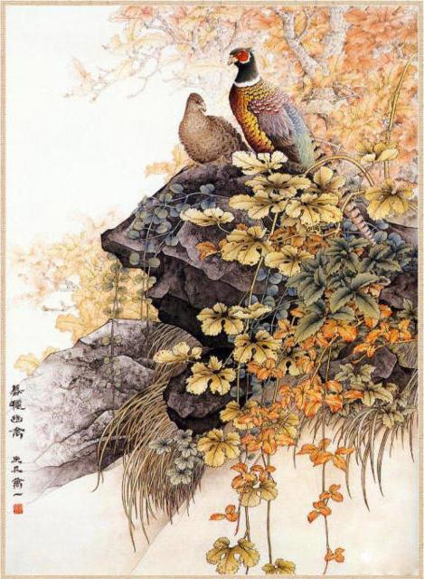 Рисунки птиц, птица, птицы,