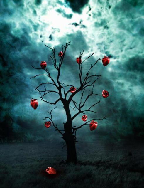 Одиночество, гроза, ночь