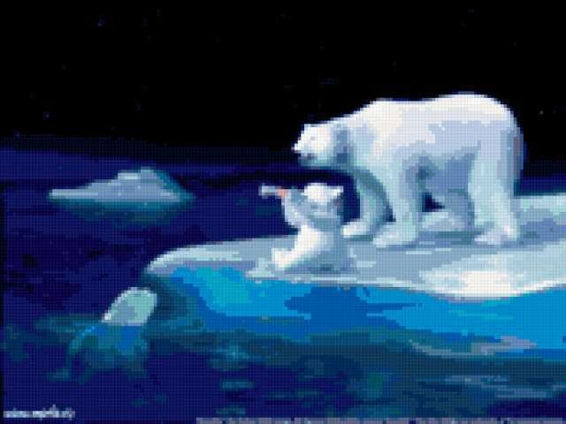 Белые медведи, предпросмотр