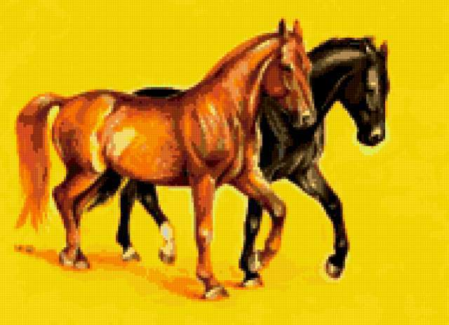 Пара лошадей, лошади