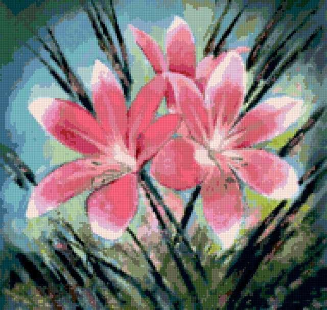 Розовые лилии,