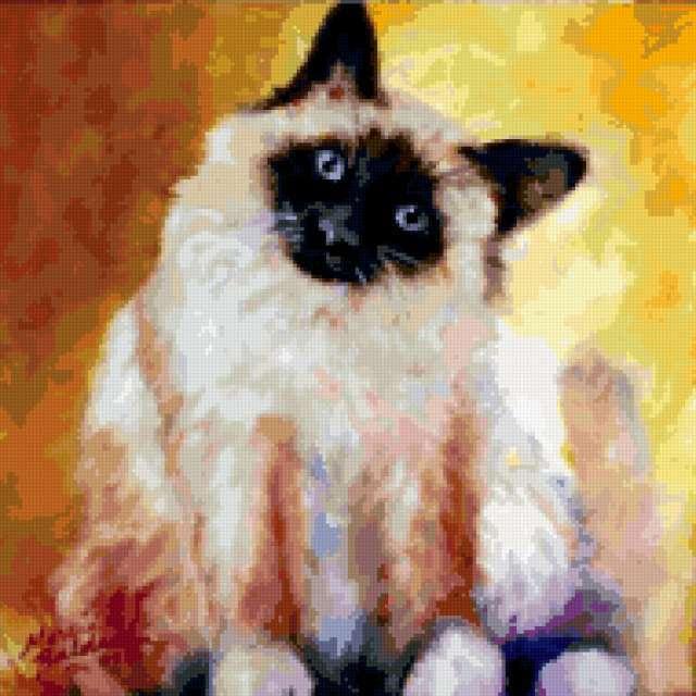 Сиамский кот, живопись, марсиа