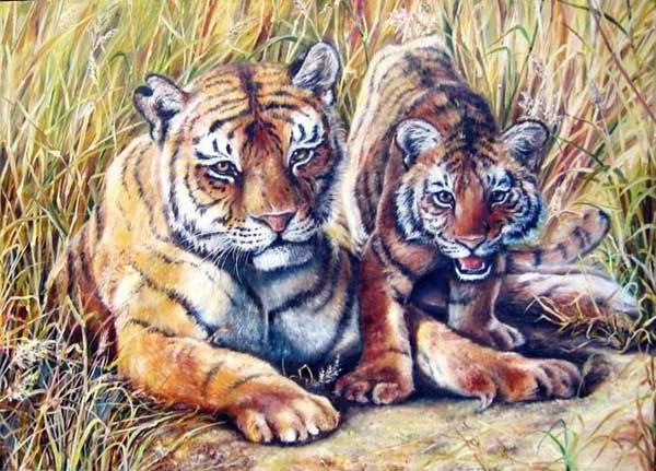 К схеме вышивки «Тигрица с