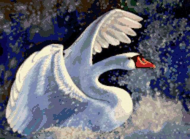 Лебедь белая, птицы, лебеди
