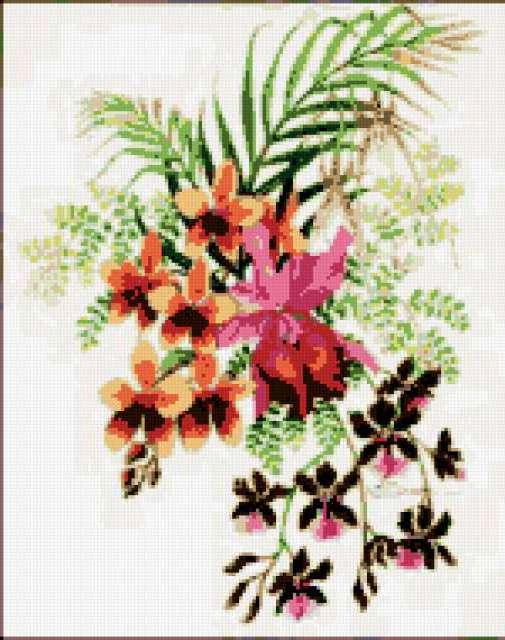 Орхидеи, экзотика, цветы