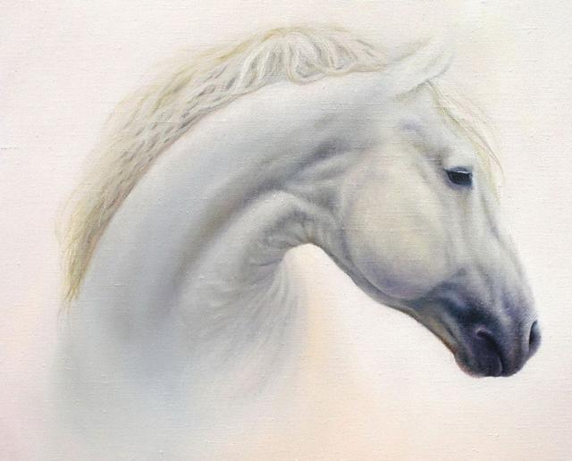 Белая лошадь, рисунок