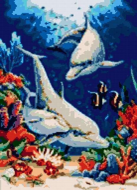 Семья дельфинов, предпросмотр