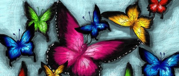 Яркие бабочки, бабочки