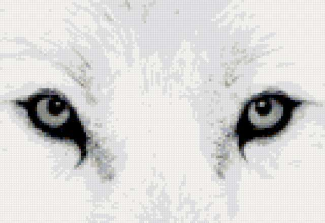 Глаза волка, предпросмотр