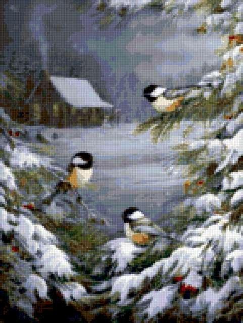 Синицы, зима