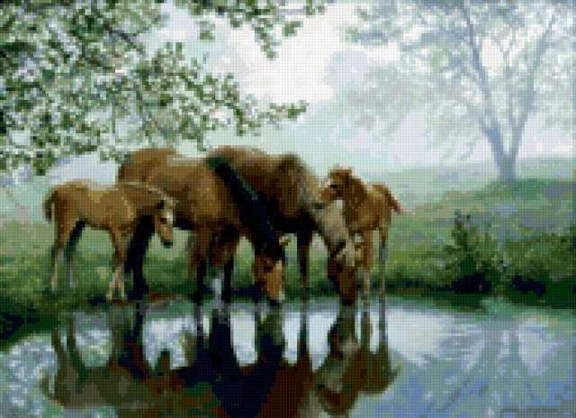 На водопое, лошади, природа,