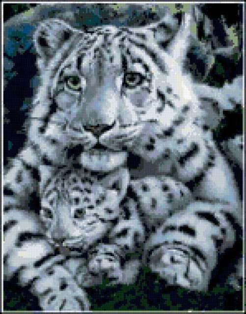 Тигр с тигренком, предпросмотр