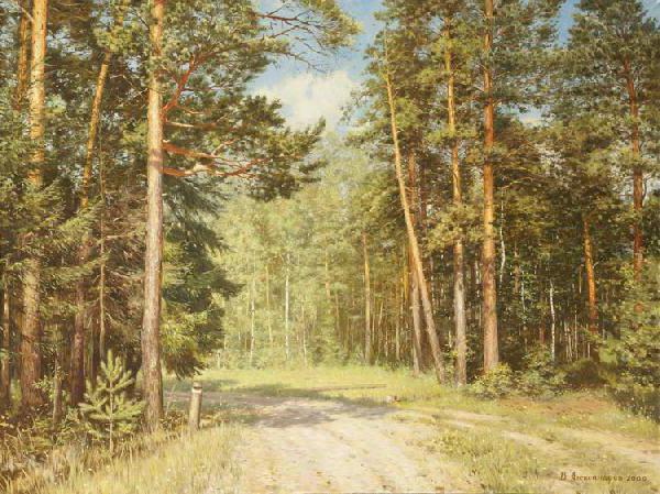 Сосновый лес, сосны, пейзаж