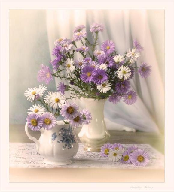 Осенние астры, цветы, ваза,
