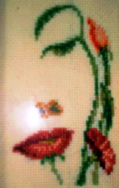 Лицо или поле, цветок, цветы,