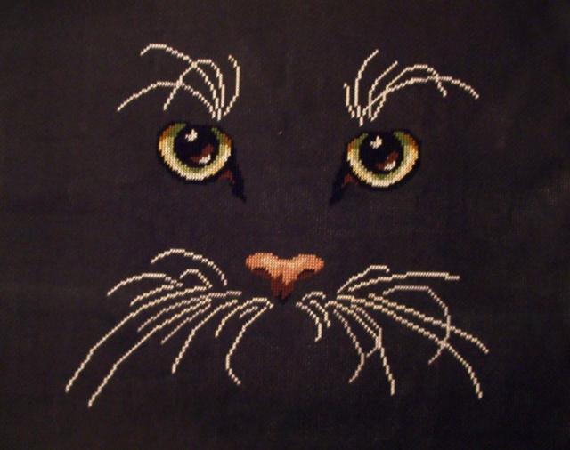 Бесплатная Схема Вышивки Крестом Черный Кот