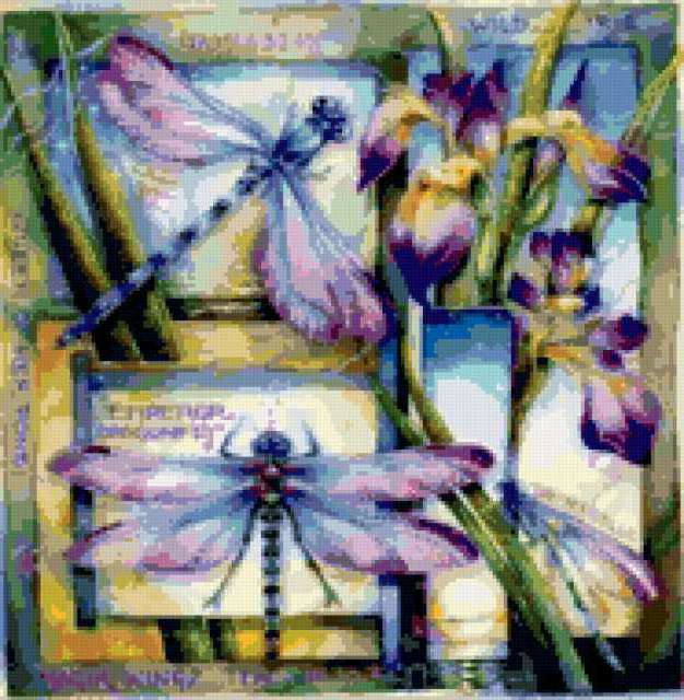 Ирисы и стрекозы, цветы,