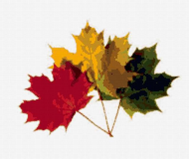 Листья клена, предпросмотр