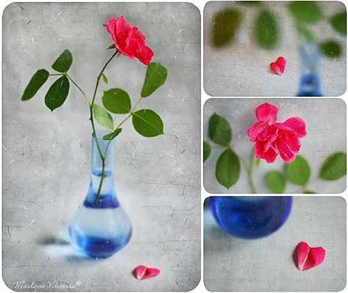 Мозаика..., цветы, ваза, роза
