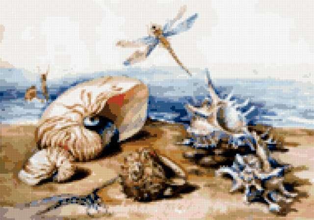 Морской мотив, море, ракушки,