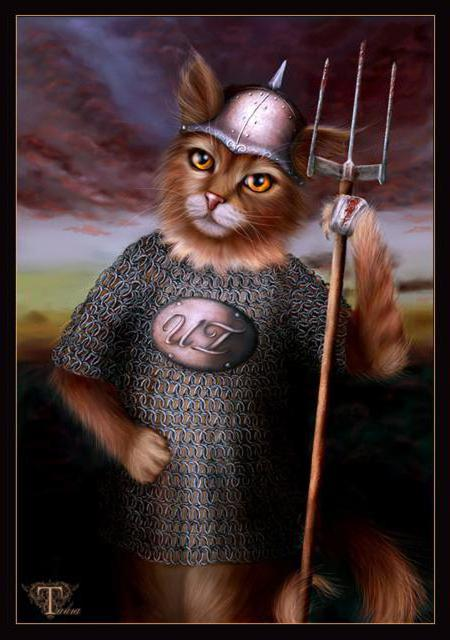 Кот-воин, оригинал