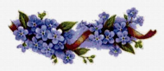 Незабудки, цветок, узор