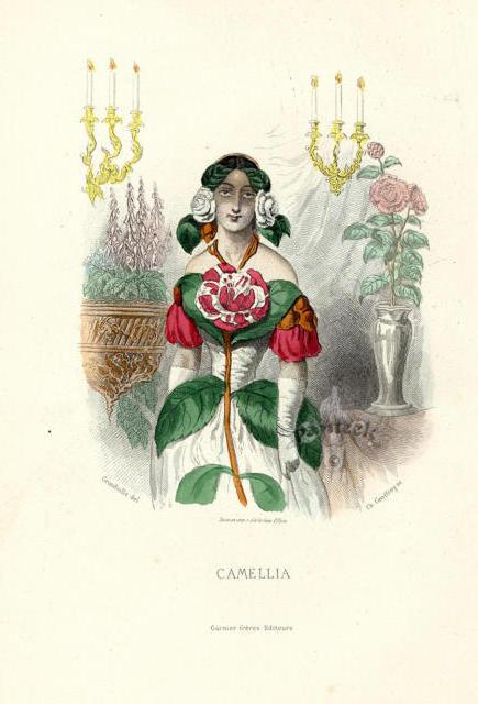 Девушка-цветок камелия