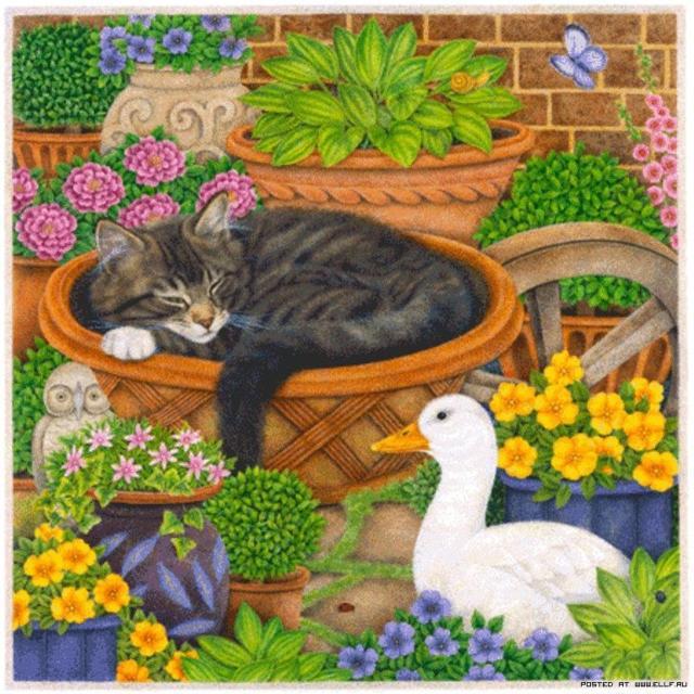 Белый гусь и спящий кот,