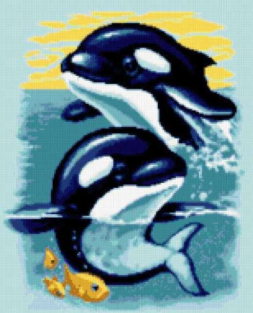 Дельфинчики, море, дельфины