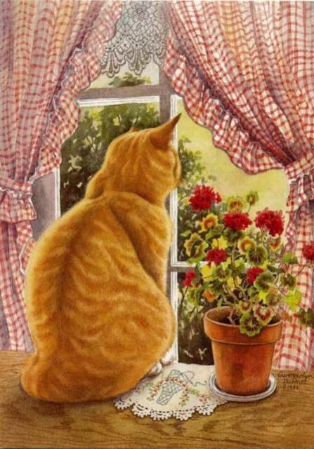 Рыжий кот на окне, оригинал