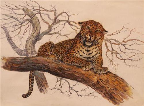 """В.Бастрыкин """"Леопард на"""