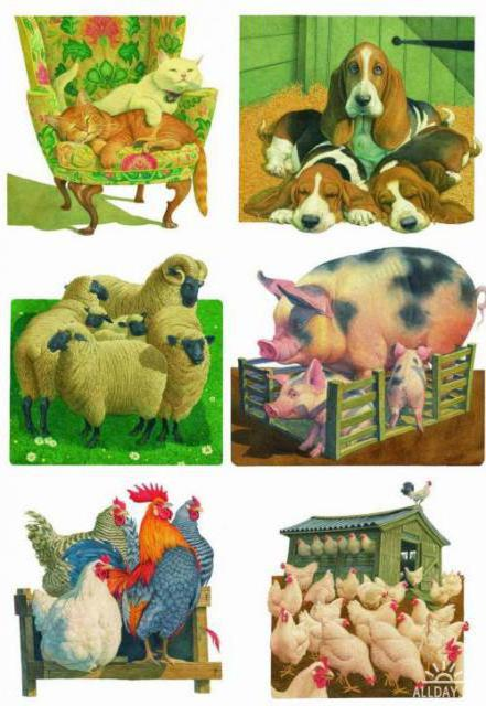 Домашние животные, домашние