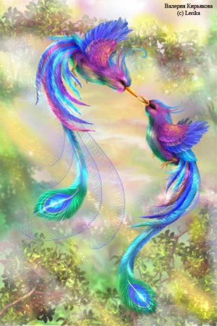 Райские птицы, оригинал