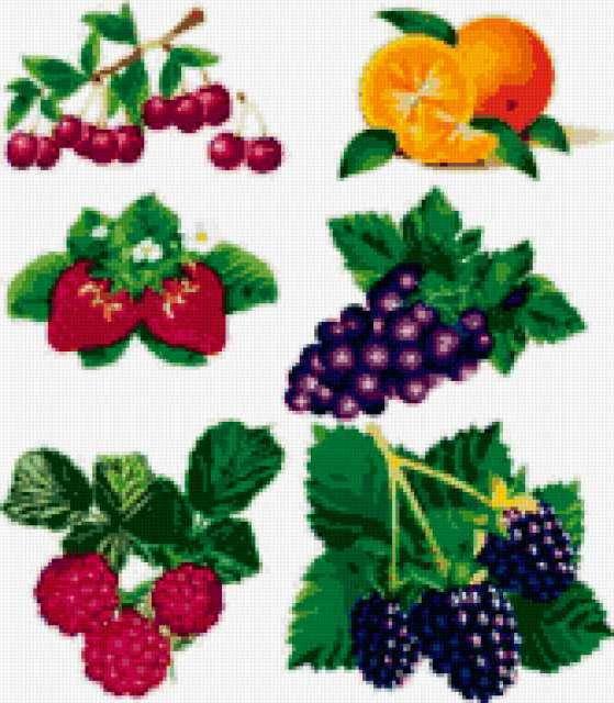 Ягоды, ягоды, малина, ежевика,