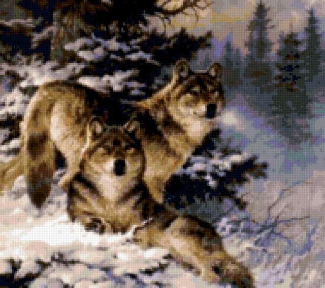 Пара волков, предпросмотр