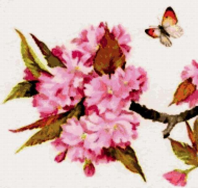 Цветущая вишня, предпросмотр