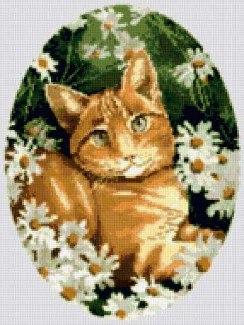 Рыжая Кошка, предпросмотр