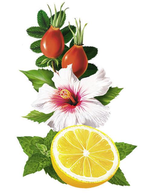 Гибискус, шиповник и лимон,