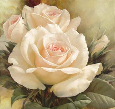 Белые розы, розанчики