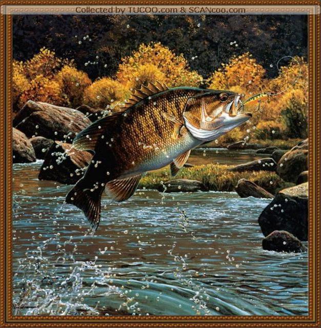Азартная рыбалка, рыбалка