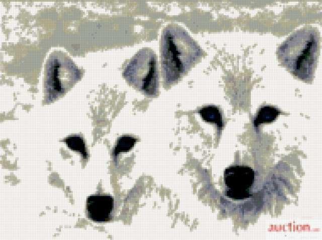 Волчата, предпросмотр
