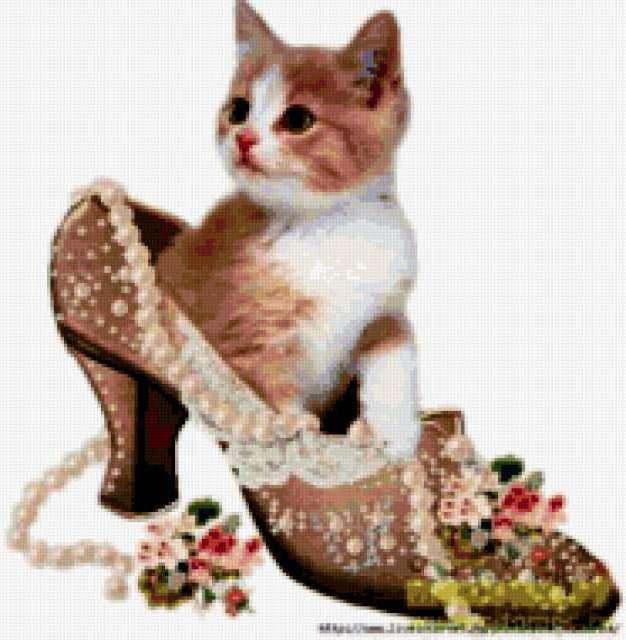 Котёнок в туфельке